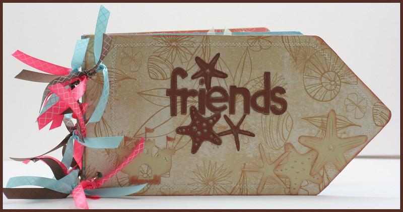 Friends Tag Album